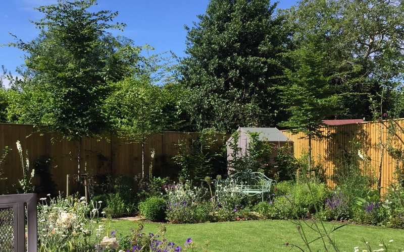 Completed garden in Hampton, Surrey, designed by Pam Johnson