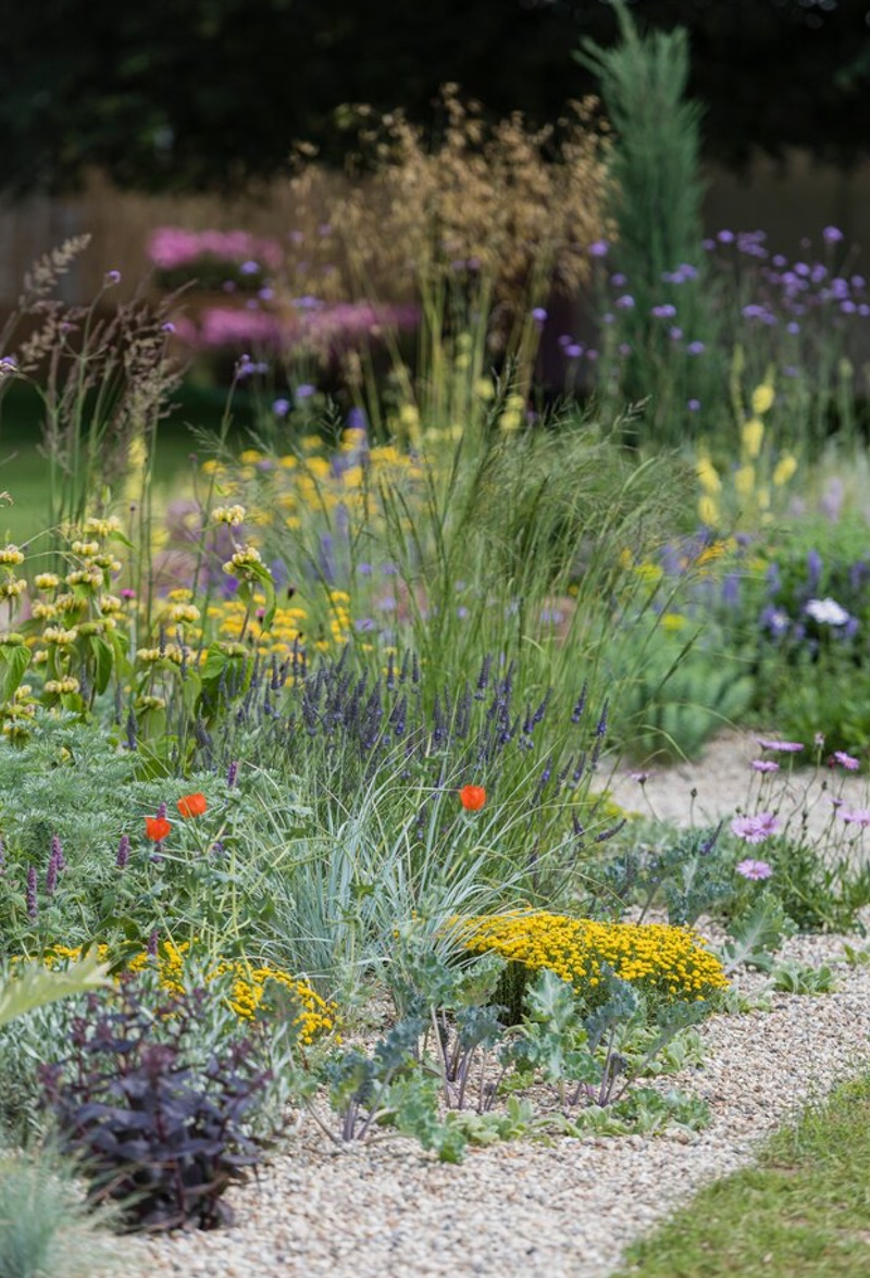 The Drought Tolerant Garden, Designed by David Ward.