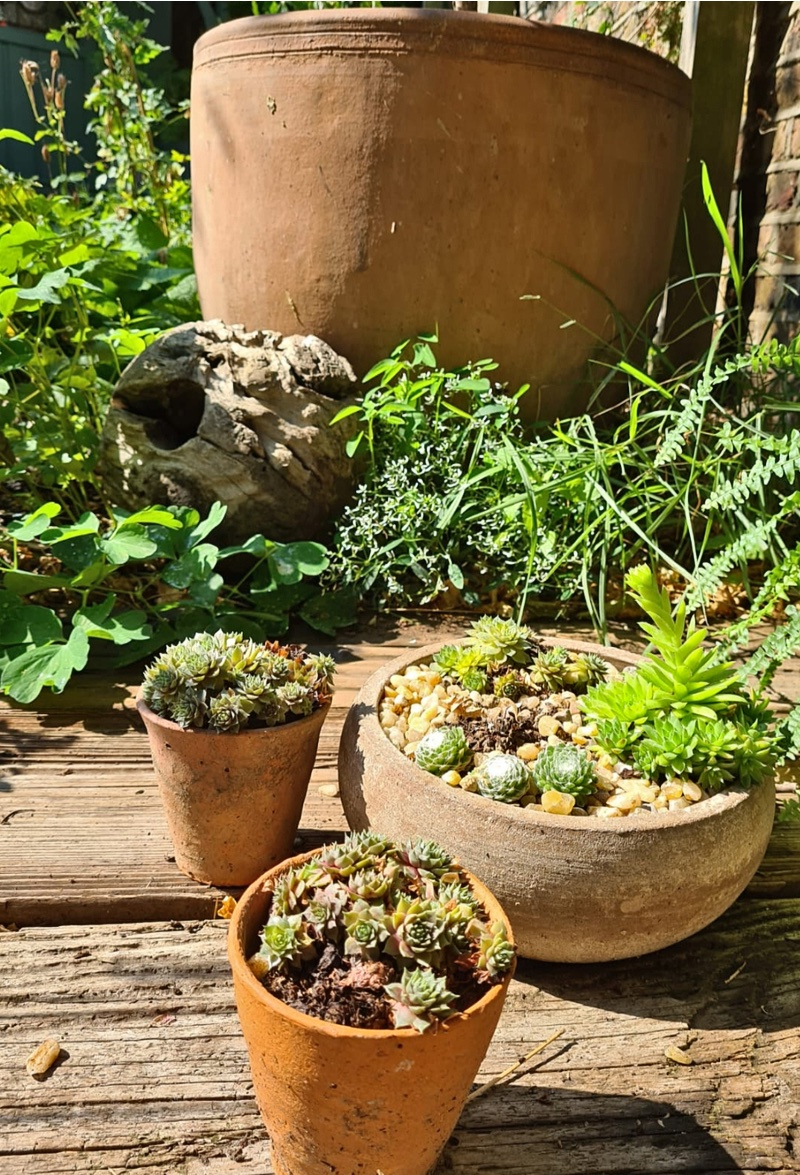 Recycled Garden Pots And Planters