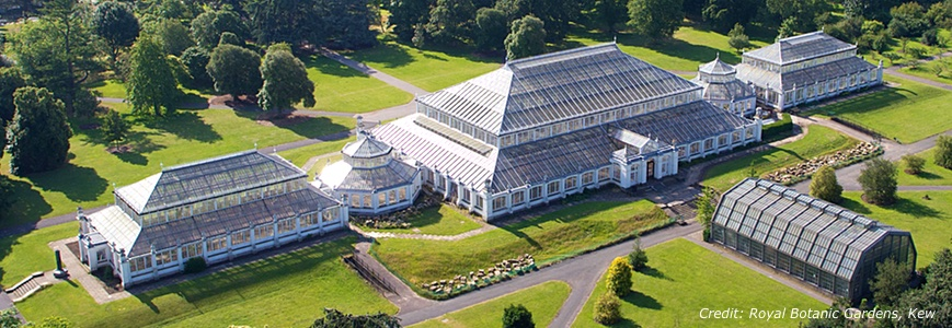 temperate-house-at-kew-gardens