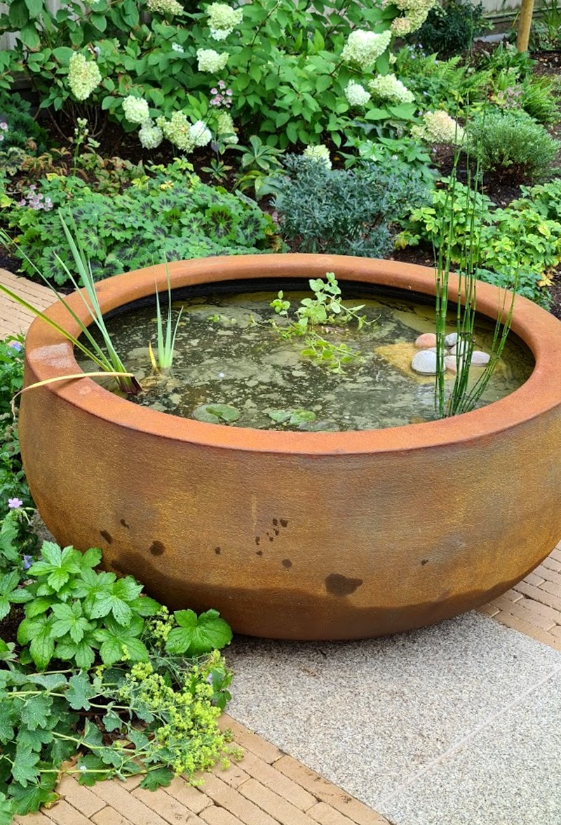 Water Feature And Plants By Landscaping Solutions